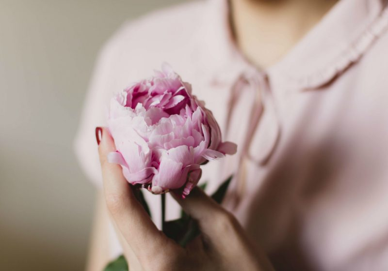 Woman holding beautiful pink flower feminine energy femininity | The Sublime Woman